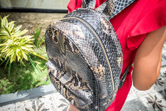 Stylish young woman in red dress with leather snakeskin python rucksack in the asian garden. Tropical Bali island Royalty Free Stock Photo