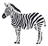 Stylish Zebra Stock Photos