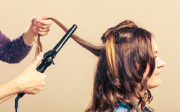 Stylist curling hair for young woman. Stock Photography
