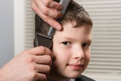 Stylist cuts the boys hair with a hair clipper in barbershop. Stylist cuts the boy`s hair with a hair clipper in barbershop stock image