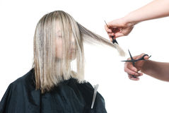 Stylist cutting hair of young blonde woman. Stock Images