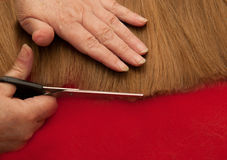 Stylist cutting split ends Stock Photo