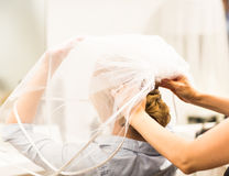 Stylist pinning up a bride's hairstyle and bridal veil before the wedding Royalty Free Stock Photo