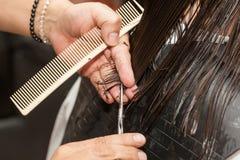 Stylist som gör en frisyr till en vit kvinna Royaltyfri Bild