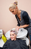 Stylist washing woman hair Stock Image