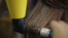 Stylista osuszka i robić klienci zdrowy włosy uczesanie, kobiety piękna bar zbiory wideo