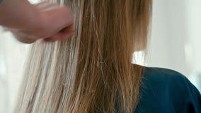 Stylisten kammar vid borsten det kvinnliga håret efter frisyr i skönhetfrisörsalong stock video