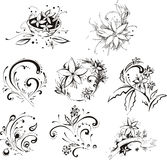 Stylistic decorative flower elements Royalty Free Stock Photography
