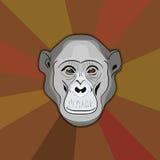 Stylization monkey Stock Image