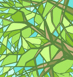 Stylized abstract green tree. Royalty Free Stock Images
