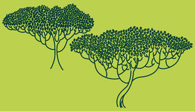 Stylized abstract trees illustration. Ecology and garden theme. Royalty Free Stock Photography