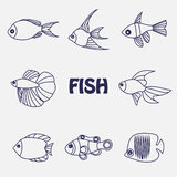 Stylized aquarium ornamental river and sea fish Royalty Free Stock Photos