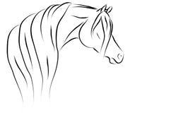 Stylized Arabian Vector Illustration. Beautiful stylized Arabian horse illustration Stock Images