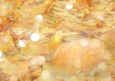 Stylized autumn background with leaves and pumpkins in golden tones Royalty Free Stock Image