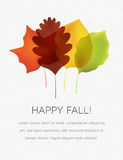 Stylized Autumn Leaves on a White Textured Background Royalty Free Stock Photos