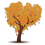 Stylized Autumn Tree. Abstract stylized tree with colorful leaves for season of autumn Royalty Free Stock Image