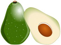 Stylized avocado isolated Stock Images
