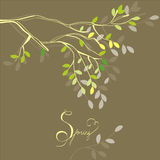 Stylized background with spring branch. And leaves Stock Images