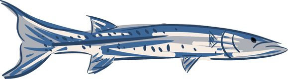 Stylized barracuda isolated Stock Photography