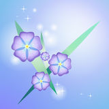 Stylized beautiful violet Stock Images