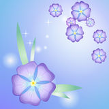 Stylized beautiful violet Royalty Free Stock Photos