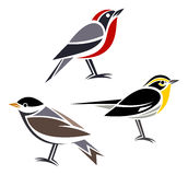 Stylized birds. Bay-breasted Warbler, Blackburnian Warbler and Blackpoll Warbler Stock Photography