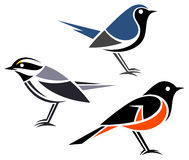 Stylized birds. Black-throated Gray Warbler, Black-throated Blue Warbler and American Redstart Royalty Free Stock Photo
