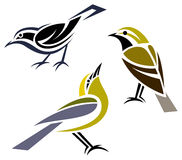 Stylized birds. Black-throated Green Warbler, Black-and-White Warbler and Blue-winged Warbler Royalty Free Stock Images