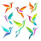 Stylized Birds. Colorful Hummingbirds in flyght Stock Image