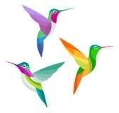 Stylized Birds. Three species of Hummingbirds Stock Photography