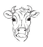 Stylized black and white cow head Stock Photography