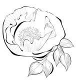 Stylized blomma Arkivbilder