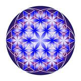 Blue and violet flower of life royalty free illustration