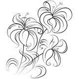 Stylized bouquet of flowers similar to a lily in a colorless version Royalty Free Stock Photo