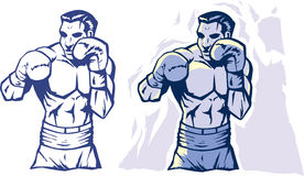 Stylized Boxer Stock Photography