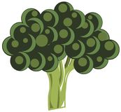 Stylized broccoli isolated Royalty Free Stock Photo