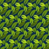Stylized cartoon dense foliage seamless pattern. Royalty Free Stock Image