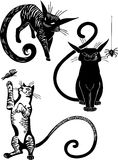 Stylized Cats - elegance and graceful cats. Royalty Free Stock Image