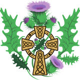 Stylized Celtic cross framed thistle flowers Stock Photography