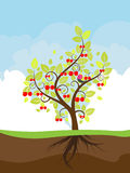 Stylized Cherry Tree Royalty Free Stock Images
