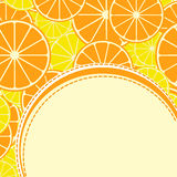 Stylized citrus fruit. Card with stylized citrus fruit. Background with citrus fruits. Lemon and Orange slice. High quality vector Stock Photography