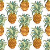 Stylized colorful pineapple. Vector seamless pattern Royalty Free Stock Photography