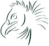 Stylized condor isolated in black. Illustration that represents a stylized condor. Image that can be used as logo or t shirt decoration or projects about this Stock Images