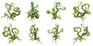 Stylized Creeper, PNG Transparent Background Stock Photos