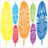 Stylized decorative feathers. Vector illustration Stock Images