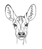 Stylized deer head Royalty Free Stock Images