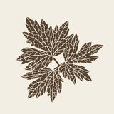 Stylized detail silhouette of leaf isolated on Royalty Free Stock Images