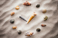 Stylized dial clock for shells on the sand for concentration and relaxation for harmony and balance in pure simplicity Stock Image