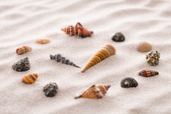 Stylized dial clock for shells on the sand for concentration and relaxation for harmony and balance in pure simplicity Stock Photo