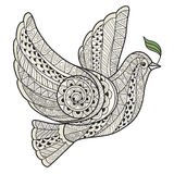 Stylized dove with olive branch style zentangle Royalty Free Stock Photos